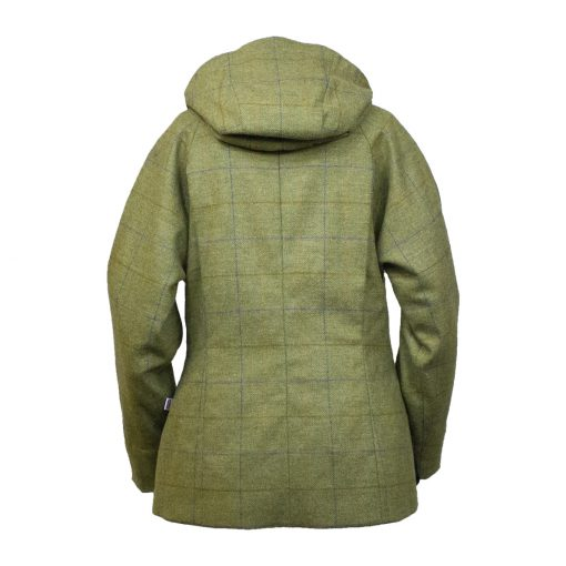 Amber jacket green/blue back hood down